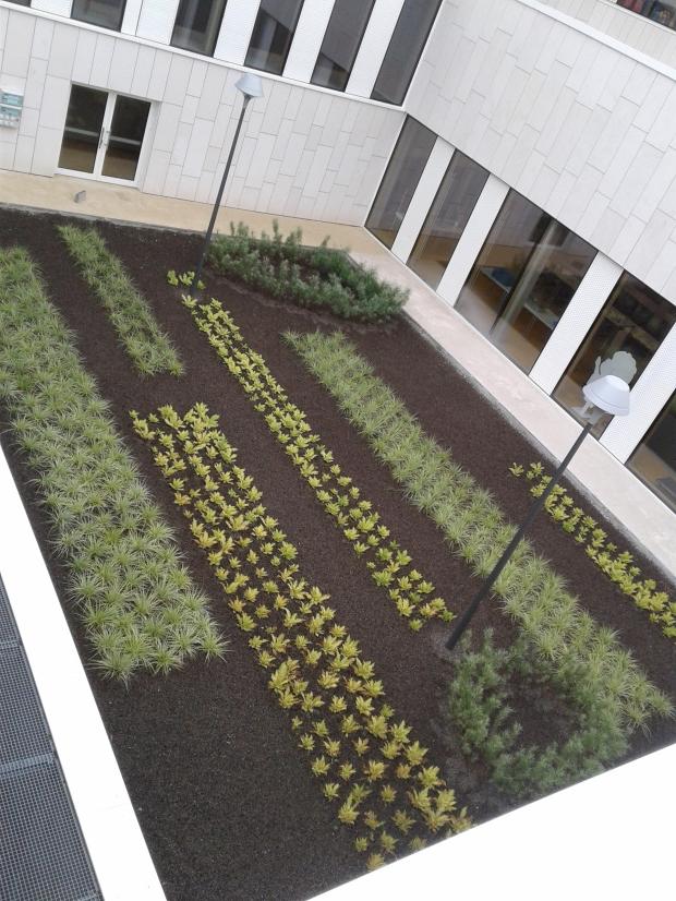 Aménagement d'espaces verts : agencement